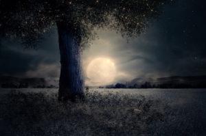 Nouvelle Lune 13-03-2021